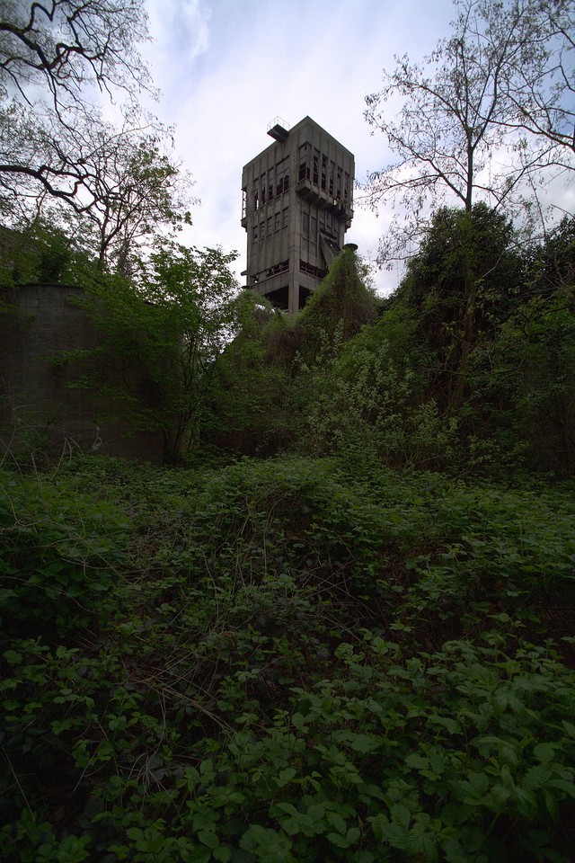 Tower behind the undergrowth